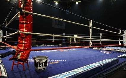 Boxe - Bradley : « Je vais gagner »