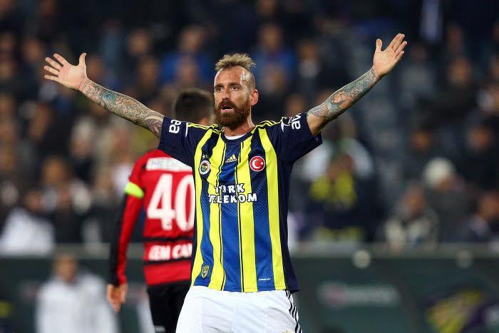 Raul Meireles, Fenerbahçe