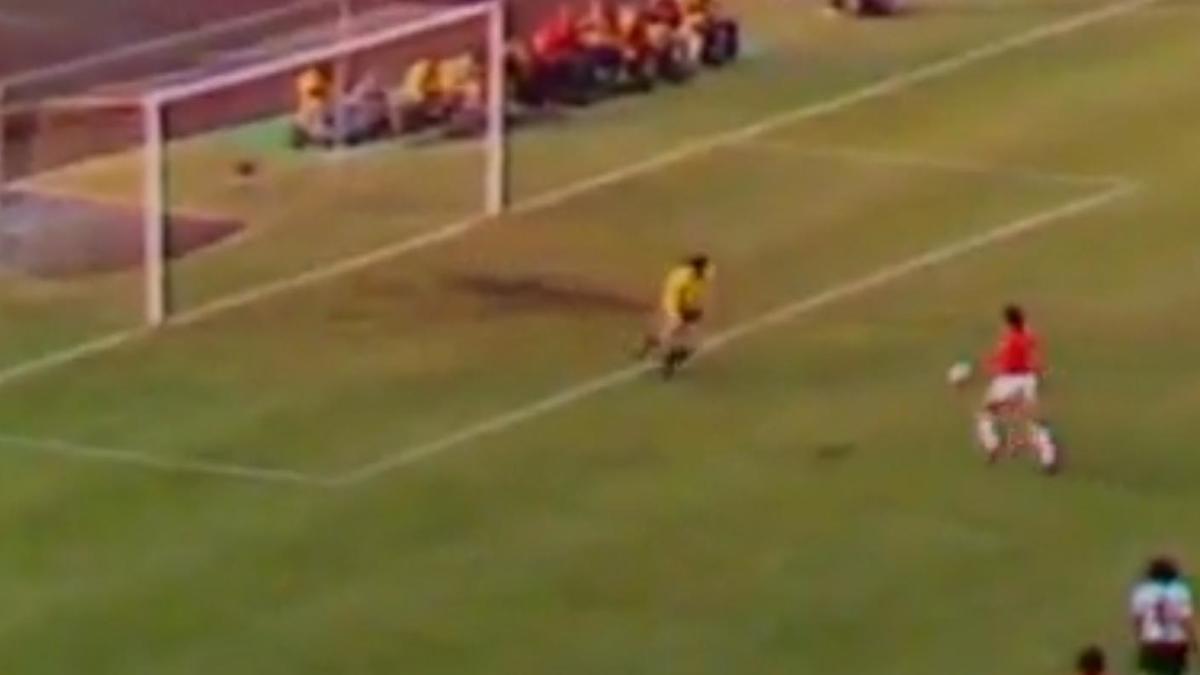 Coupe du monde 1974 : Le plus beau but (vidéo)