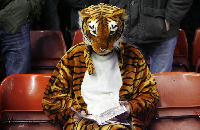 Supporter de Hull City